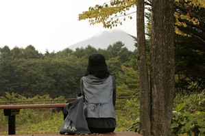 Iwatesansa